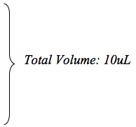 Total Volume 10 ul