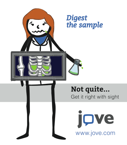 JoVE Journal Digest the Sample